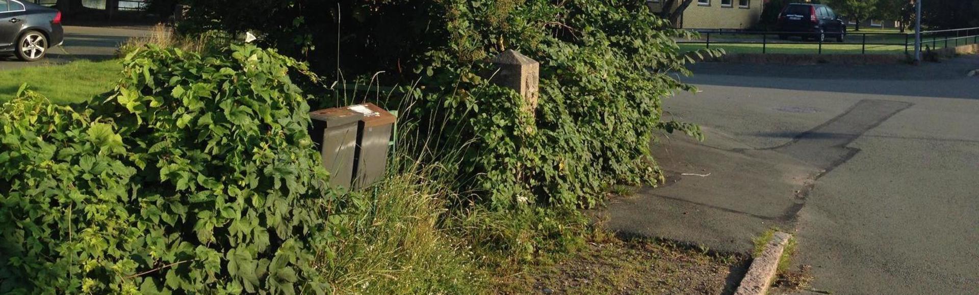 Häck vid staket och trottoar